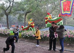 Phố hoa Hà Nội 2012 gây thất vọng