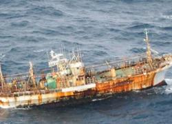 Tàu mất tích trong sóng thần Nhật đến Canada