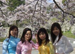 Áo dài Việt khoe sắc với hoa anh đào Nhật