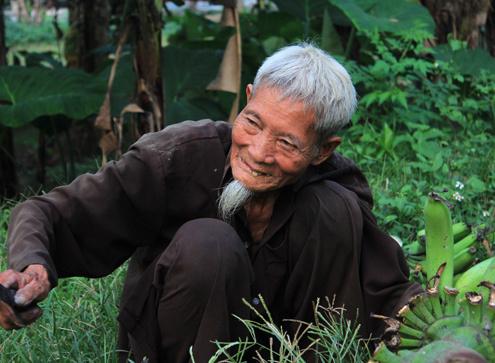 ong-lao-1355207126_500x0.jpg