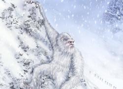Tranh cãi về lông của người tuyết