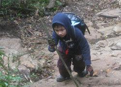 Cậu bé 6 tuổi leo Fansipan