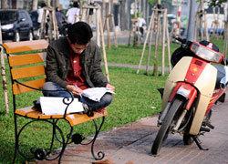 Sài Gòn lắp 200 ghế ven kênh Nhiêu Lộc