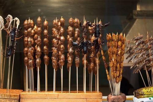 Những xiên bọ cạp, cá ngựa, châu chấu và ve sầu được bày bán ở Bắc Kinh năm 2009. Ảnh: Victor Fraile, Corbis