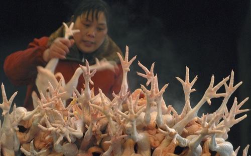 chicken-feet-1373338136_500x0.jpg