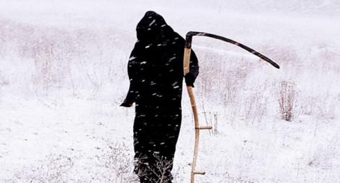 Cái chết xảy ra chậm hơn bạn nghĩ    Ảnh: Paul Ê-li, Flickr