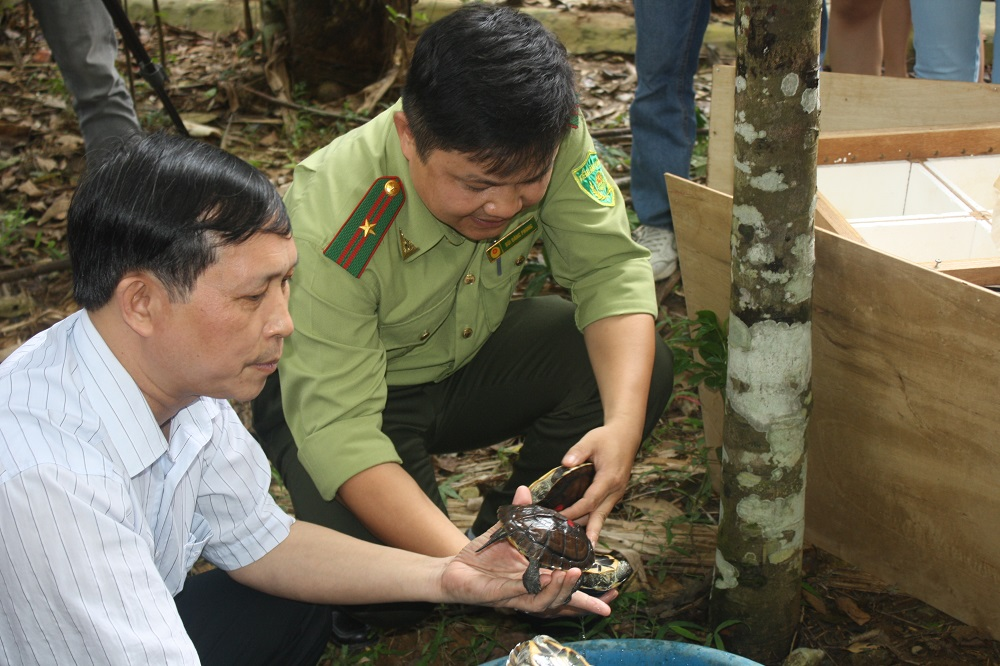Ông Trương Quang Bích (trái), Giám đốc Vườn quốc gia Cúc Phương và ông Bùi Đăng Phong, Phó Giám đốc Trung tâm Cứu hộ và Bảo tồn động thực vật hoang dã quý hiếm Cúc Phương đang giới thiệu về đặc tính sinh học của loài rùa Trung Bộ.