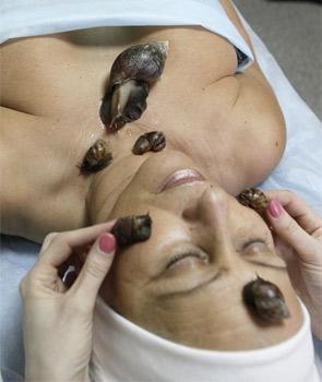 snailmassage3-1376971123.jpg
