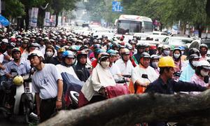 Trung tâm Sài Gòn kẹt cứng vì cây xanh ngã đè taxi
