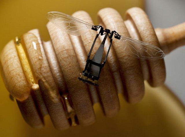 robotsinsider-robobee-1-7929-1379910669.