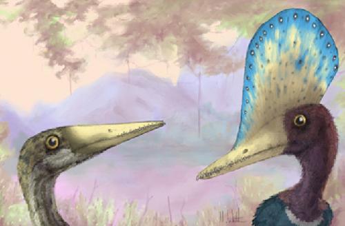 4-display-pterosaur2-4899-1380017461.jpg