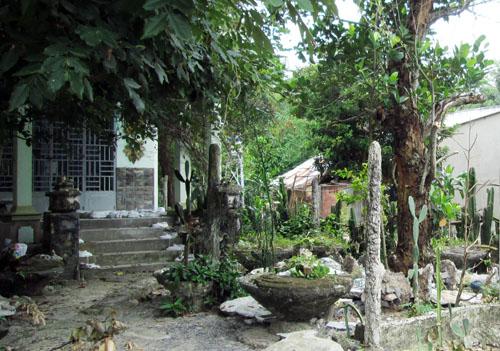 Ông Chứng sống ở TP HCM, mỗi tháng, ông Chứng về thăm khu vườn này đôi ba lần.