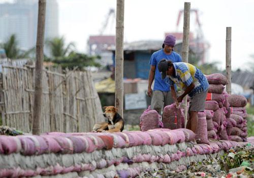 Người Philippines hối hả mang túi cát gia cố một con đê trước bão ở mộtlàng ven biển tại Manila. Cơ quan Thiên văn và Địa vật lý Khí quyển Philippines cảnh báo người dân siêu bão Haiyan có thể gây ra lũ quét và sạt lở đất.