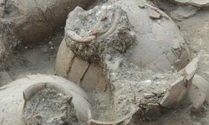 Hầm rượu vang 3.700 năm tuổi