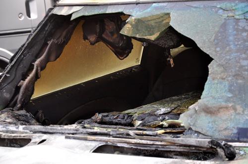 Theo nhận định ban đầu, nguyên nhân gây ra cháy có thể do động cơ của xe bị rò nhiên liệu.