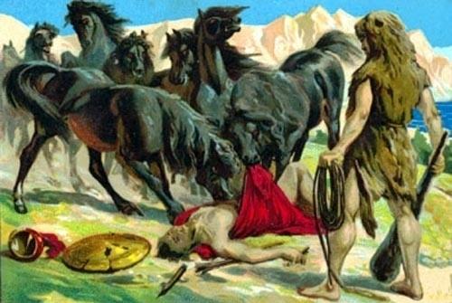 diomedes-horses-9895-1390917033.jpg