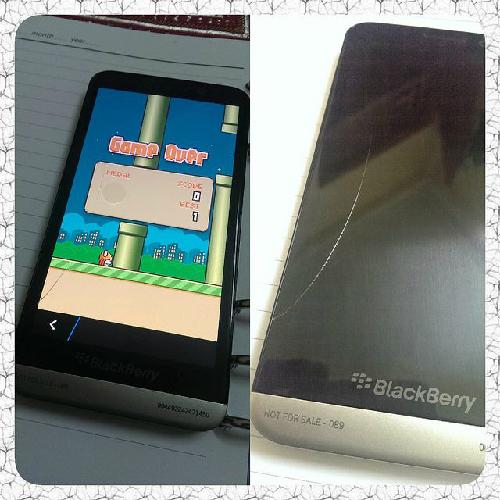 flappy-bird-3696-1391739261.jpg