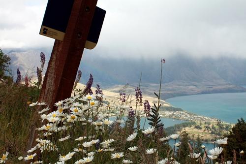 View từ đỉnh núi xuống hồ Wakatipu, Queenstown.