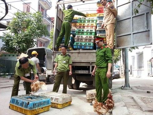Phó Thủ tướng chỉ đạo xử lý nghiêm nếu phát hiện cán bộ, công chức bao che và tiếp tay cho hành vi buôn lậu, hàng giả. Ảnh minh họa: Phương Sơn