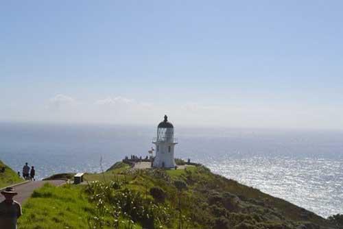 vnexpress-about-nz-lighthouse-8284-6876-