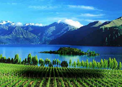 cycling-tours-new-zealand-2428-139763828