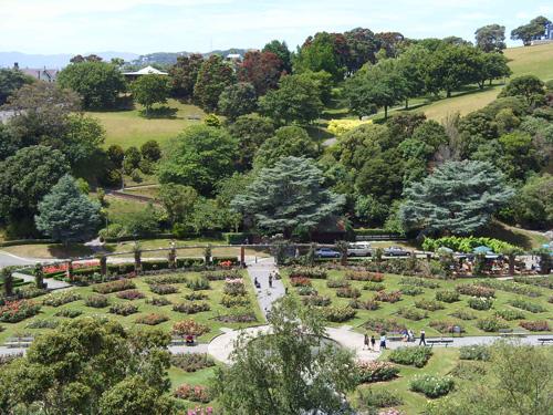 rose-garden-in-wellington-bota-1114-8995