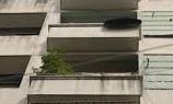 Bé trai rơi từ tầng 3 khách sạn khi du lịch cùng gia đình