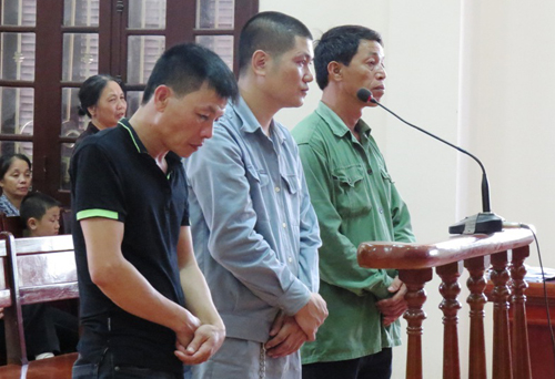 bi-cao-Hai-Phong-500-5808-1402024288.jpg