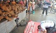 Ảnh quỳ lạy đàn chó bị giết thịt gây sững sờ
