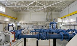 Xác chết lõa thể ở hệ thống xử lý nước thải