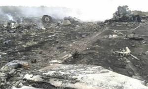 Máy bay Malaysia rơi ở Ukraine, 295 người chết