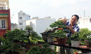 Những sân thượng tiền tỷ ở Sài Gòn