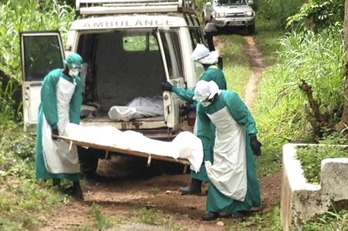Nhân viên y tế chuyển thi thể bệnh nhân tử vong do nhiễm virus Ebola ở thành phố Kenema, Sierra Leone hôm 25/7. Ảnh: Reuters.