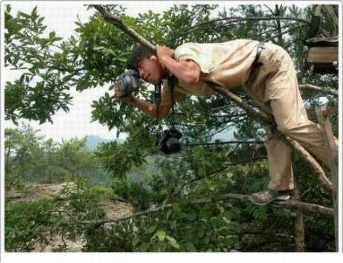 Tác nghiệp trên cây ư, chẳng có gì khó!