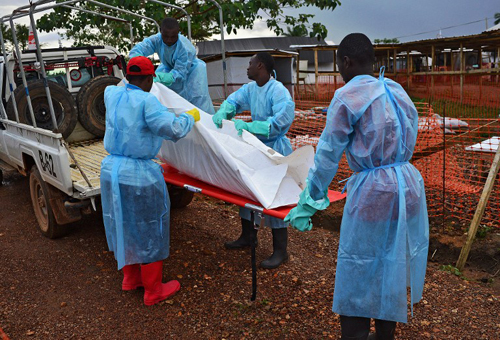 SIERRA LEONE, KAILAHUN : Sierra Leone government burial team members load the body of an Ebola victim onto a truck at an MSF facility in Kailahun, on August 14, 2014. Kailahun along with Kenama district is at the epicentre of the world's worst Ebola outbreak. The World Health Organisation (WHO) revealed that the latest death toll from the Ebola virus in Guinea, Sierra Leone, Liberia and Nigeria had claimed more than1000 lives. Health Organisations are looking into the possible use of experimental drugs to combat the latest outbreak in West Africa. AFP PHOTO/Carl de Souza