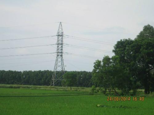 Cây cột điện vẫn ở đó, giữa cánh đồng lúa xanh ngát mang về dân làng nguồn điện không thể thiếu trong sinh hoạt hàng ngày