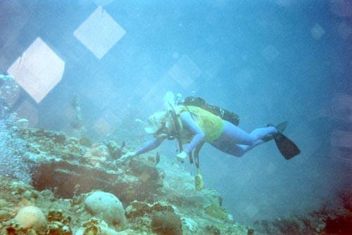 Diver-exploring-RMS-Rhone-1844-141041137