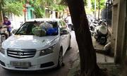 Chuyện đỗ xe dở khóc, dở cười ở Việt Nam