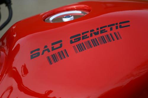 honda-hornet-600-bad-genetic-0-4477-2730
