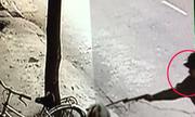 Bất lực nhìn trộm dùng súng điện bắn chó giữa Sài Gòn