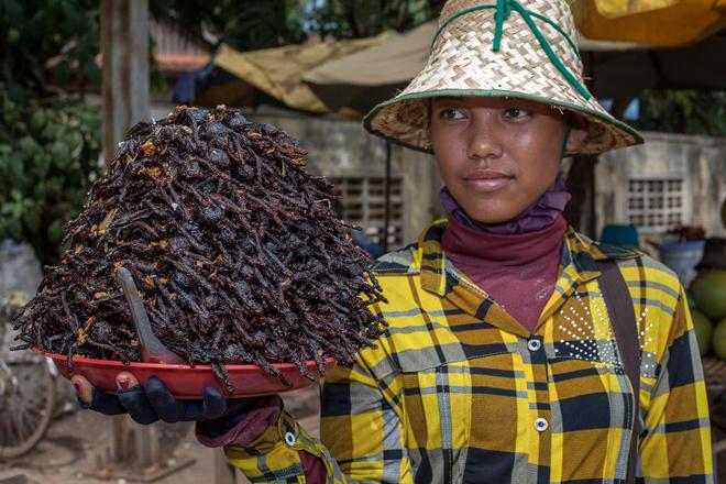 Đặc sản nhện lông ở Campuchia