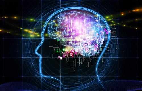 brainpower-8978-1426236941.jpg