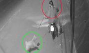 4 thanh niên câu trộm chó nhanh như chớp ở Hà Nội