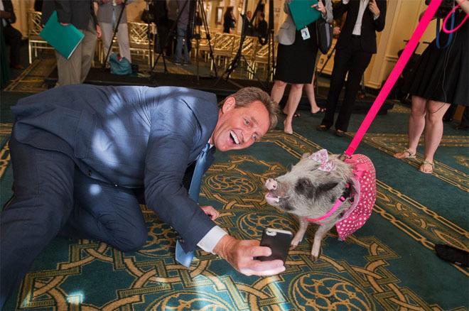 Khoảnh khắc ngộ nghĩnh của chính trị gia và các con vật