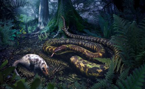worlds-first-snake-5593-1432087997.jpg