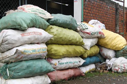Một đống khoai lang được người dân bỏ bên đường ở huyện Bình Tân, tỉnh Vĩnh Long. Ảnh: Cửu Long