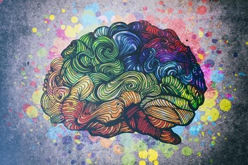 6-8-brain-4491-1438849981.jpg