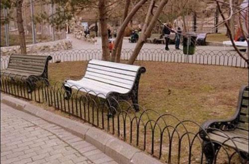 bench-5673-1438829426.jpg