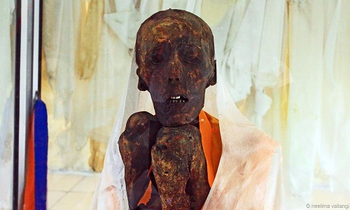 VNE-A-500-years-old-mummy-with-9945-3549