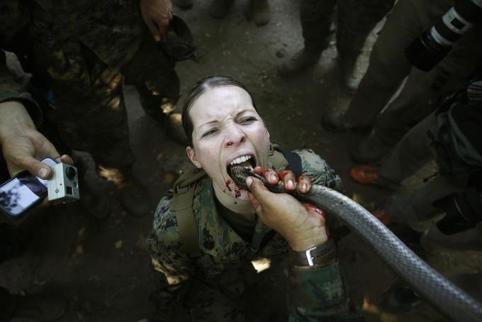 Những bông hồng thép trong quân đội Mỹ